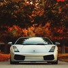 Lamborghini voitures gallardo de Autumn leaves véhicules  HD wallpaper