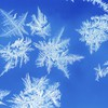 Snowflakes iii HD wallpaper