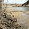 North saskatchewan river in the spring HD wallpaper