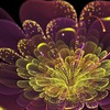 Multicolor fractals digital art HD wallpaper