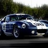 Shelby cobra blue cars number racing stripes HD wallpaper
