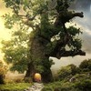 Trees moon fantasy art HD wallpaper
