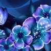 Nights blue dreams HD wallpaper