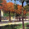 French parks traditional art gustave caillebotte impressionism HD wallpaper