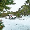 Winter snow ford raptor HD wallpaper