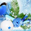 Blue bird saison d'hiver  HD wallpaper