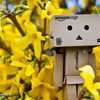 Danboard abstrakti Amazon pavasarį laikas  HD wallpaper