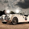 Jaguar xk120 cars roadster HD wallpaper