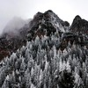 Mountains landscapes snow trees fog evergreens HD wallpaper