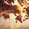 Autumn mist sunrise HD wallpaper
