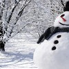 Real snowman HD wallpaper