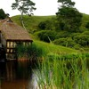 Fresh air grass huts landscapes HD wallpaper