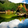 Landscapes nature forest lakes reflections HD wallpaper
