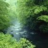 Tennessee rivers national park great smoky mountains HD wallpaper