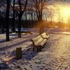 Winter sunset in the park HD wallpaper