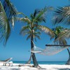 Nature plage hamac palmiers Belize  HD wallpaper