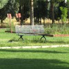 Iran artwork bench grass nature HD wallpaper