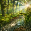 Garden spirit creek sun rays morning view HD wallpaper
