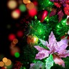Christmas decorations flowers HD wallpaper