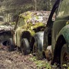 Volkswagen beetle cars moss old rusted HD wallpaper