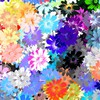 fleurs Artwork multicolore  HD wallpaper