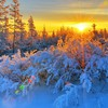 Sunset paysages nature hiver  HD wallpaper