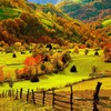 Beautiful fall photos HD wallpaper