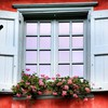 Flowers hearts nature red window HD wallpaper