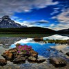 Waterfowl lake banff national park alberta canada HD wallpaper