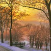 Landscapes winter roads morning HD wallpaper