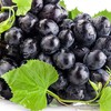 Black grapes food leaves HD wallpaper