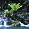 Tropical creek falls HD wallpaper