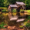Ducks farm landscapes nature tankers HD wallpaper