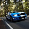 GT500 Ford mustang shelby bleu  HD wallpaper