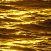 Golden Sea  HD wallpaper