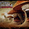 Infected mushroom HD wallpaper