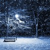 Snowy park bench HD wallpaper