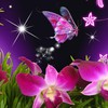 Orchids and butterfly for monarch HD wallpaper