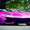 Pink cars lamborghini aventador low-angle shot HD wallpaper