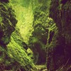 Green mountains landscapes nature trees rocks HD wallpaper