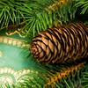 Christmas fir HD wallpaper