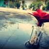 Bottles love streets HD wallpaper