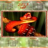 2013year of the snake HD wallpaper