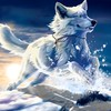 Fantasy wolf HD wallpaper