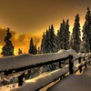 Ice winter snow fences HD wallpaper