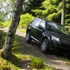 Freelander jeep land rover suv forests HD wallpaper