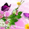 Bright bird butterflies blossoms HD wallpaper
