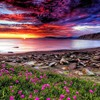 Hdr bay sunset HD wallpaper