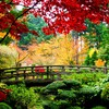 Garden bridges HD wallpaper