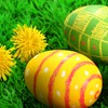 Easter nature HD wallpaper